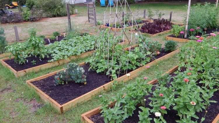 Too HOT to Florida Garden | Symbolic Gardening